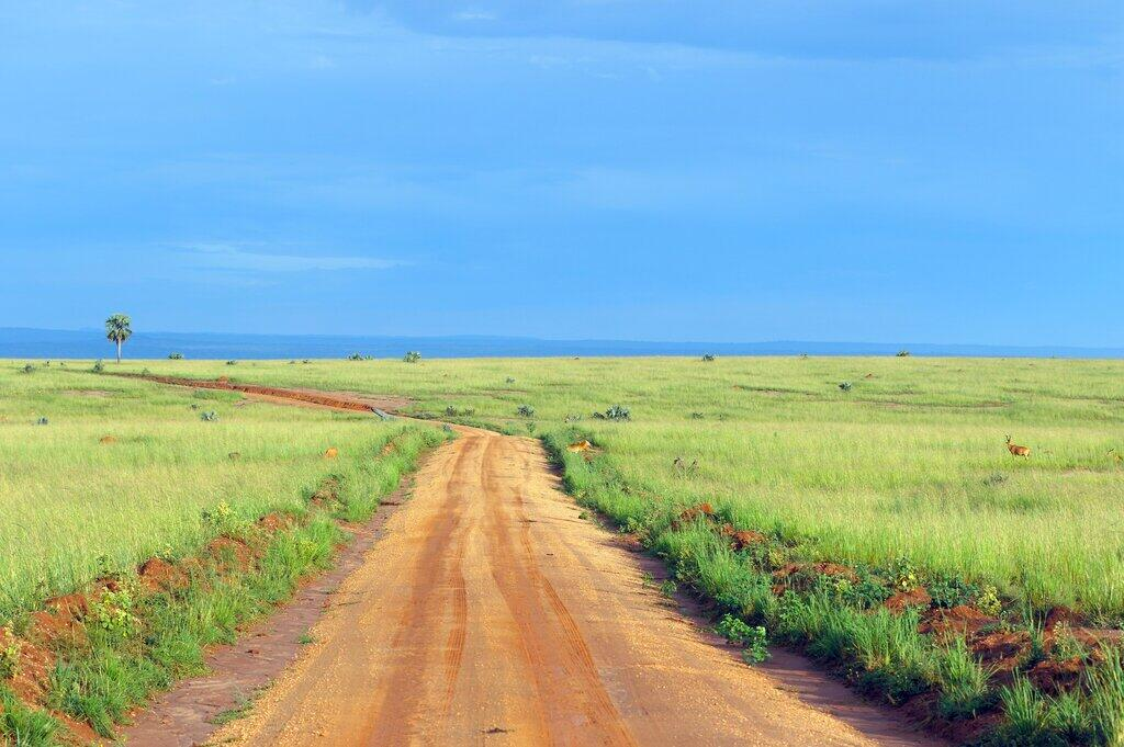 Scenery of Murchison Falls National Park